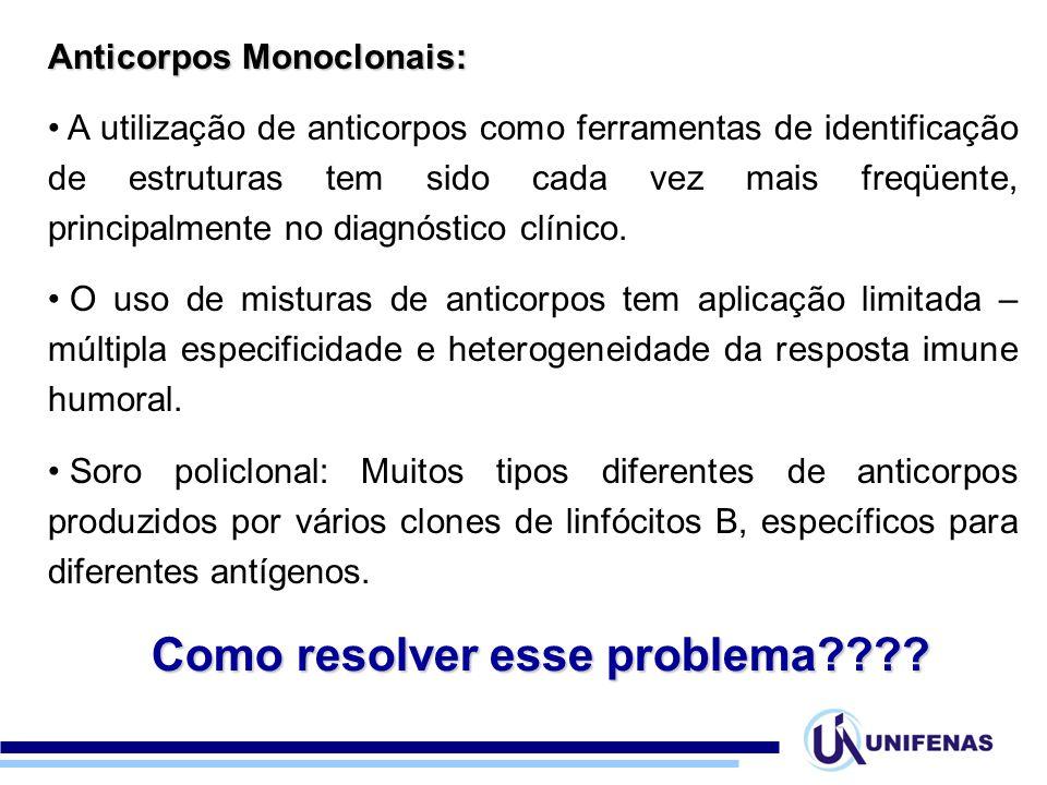 Anticorpos Monoclonais: A utilização de anticorpos como ferramentas de identificação de estruturas tem sido cada vez mais freqüente, principalmente no diagnóstico clínico.