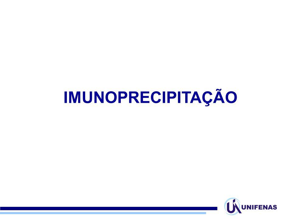 IMUNOPRECIPITAÇÃO