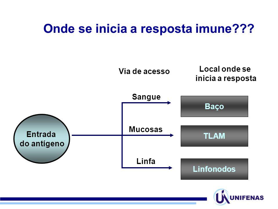 Entrada do antígeno Via de acesso Sangue Mucosas Linfa Baço Local onde se inicia a resposta TLAM Linfonodos Onde se inicia a resposta imune???