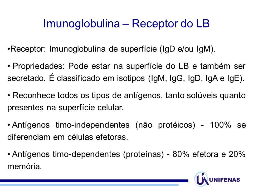 Receptor: Imunoglobulina de superfície (IgD e/ou IgM). Propriedades: Pode estar na superfície do LB e também ser secretado. É classificado em isotipos