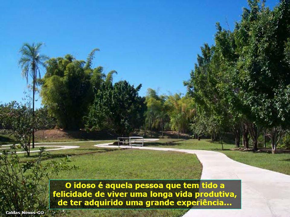 O idoso é aquela pessoa que tem tido a felicidade de viver uma longa vida produtiva, de ter adquirido uma grande experiência...