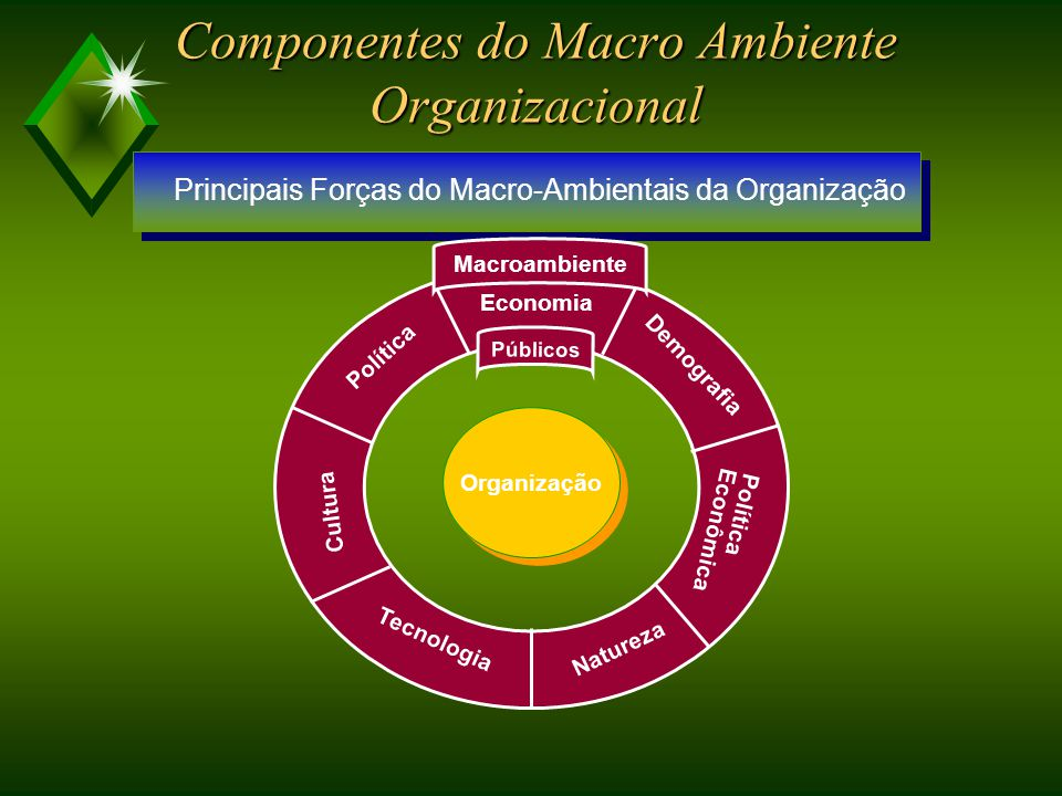 Análise Macro-ambiental DIMENSÕES DA ANÁLISE MACRO-AMBIENTAL Identificação das variáveis Ordenação Avaliação COMPONENTES DO MACRO-AMBIENTE ORGANIZACIONAL Variáveis Indicadores Elaboração de Cenários com Múltiplos Indicadores
