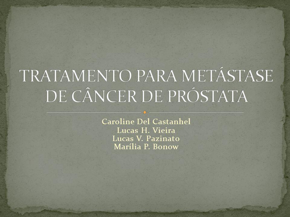 Caroline Del Castanhel Lucas H. Vieira Lucas V. Pazinato Marília P. Bonow
