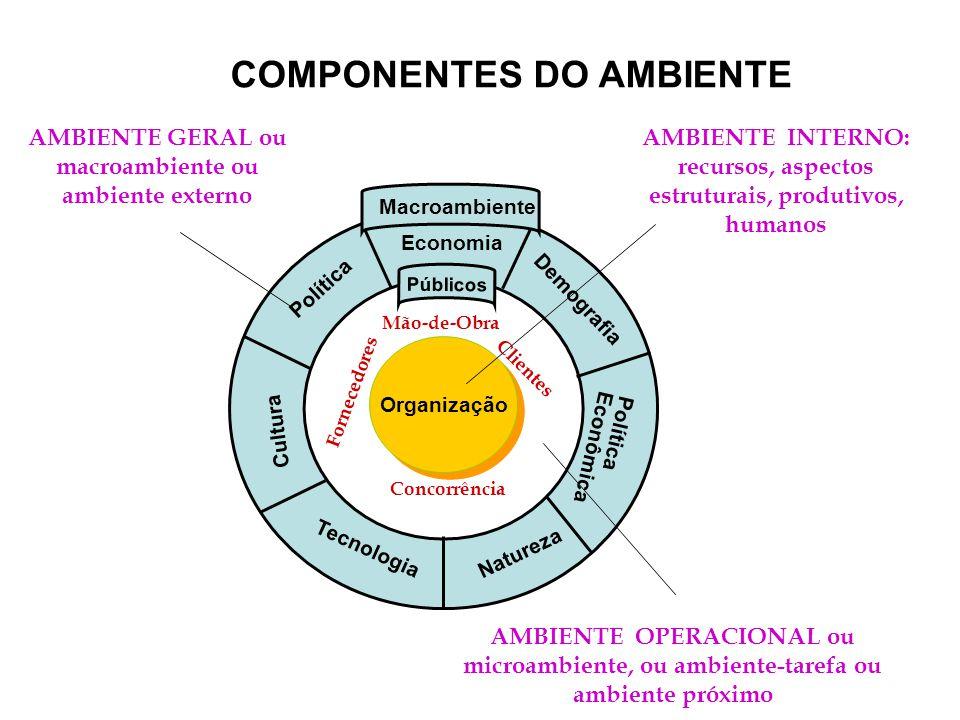 Organização Política Economia Demografia Tecnologia Natureza Cultura Política Econômica Públicos Macroambiente COMPONENTES DO AMBIENTE AMBIENTE GERAL