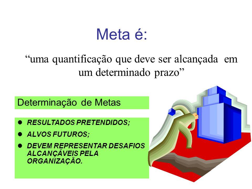 Meta é: uma quantificação que deve ser alcançada em um determinado prazo Determinação de Metas lRESULTADOS PRETENDIDOS; lALVOS FUTUROS; lDEVEM REPRESENTAR DESAFIOS ALCANÇÁVEIS PELA ORGANIZAÇÃO.