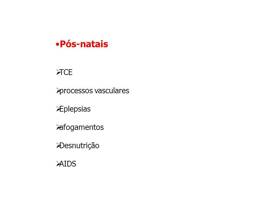 Pós-natais  TCE  processos vasculares  Eplepsias  afogamentos  Desnutrição  AIDS