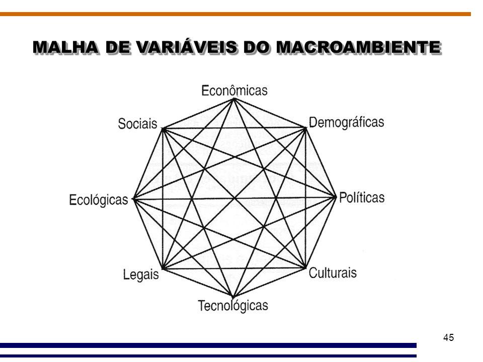 45 MALHA DE VARIÁVEIS DO MACROAMBIENTE