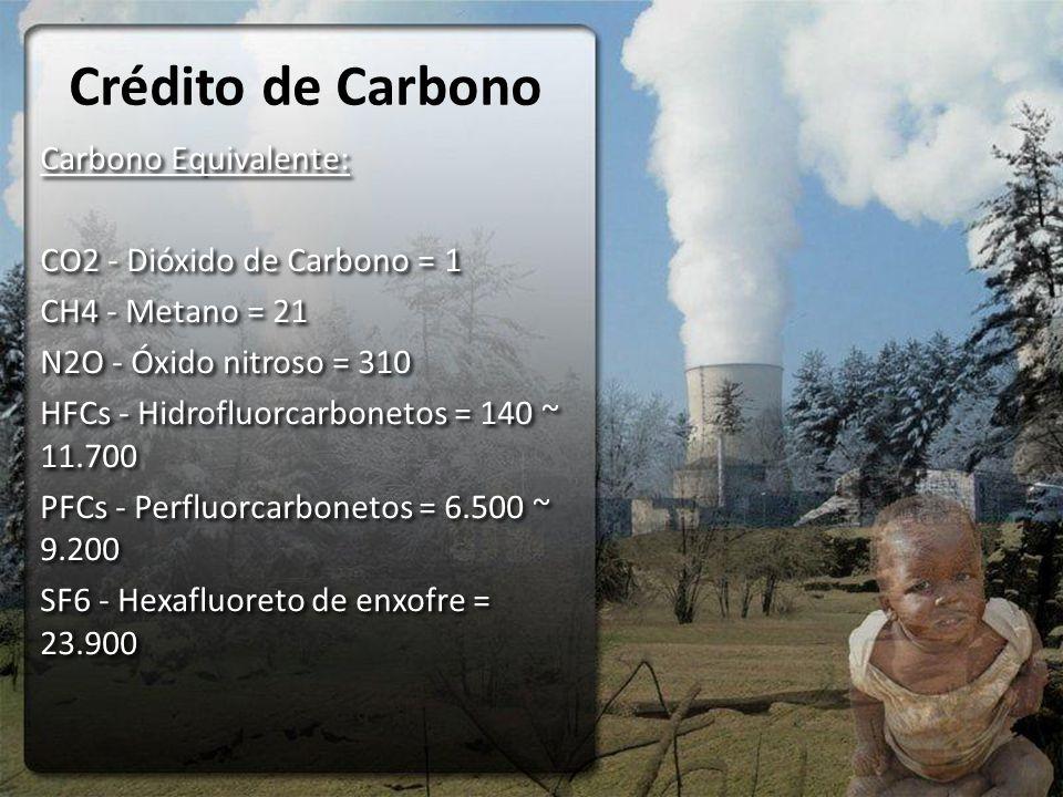 Crédito de Carbono Carbono Equivalente: CO2 - Dióxido de Carbono = 1 CH4 - Metano = 21 N2O - Óxido nitroso = 310 HFCs - Hidrofluorcarbonetos = 140 ~ 11.700 PFCs - Perfluorcarbonetos = 6.500 ~ 9.200 SF6 - Hexafluoreto de enxofre = 23.900 Carbono Equivalente: CO2 - Dióxido de Carbono = 1 CH4 - Metano = 21 N2O - Óxido nitroso = 310 HFCs - Hidrofluorcarbonetos = 140 ~ 11.700 PFCs - Perfluorcarbonetos = 6.500 ~ 9.200 SF6 - Hexafluoreto de enxofre = 23.900