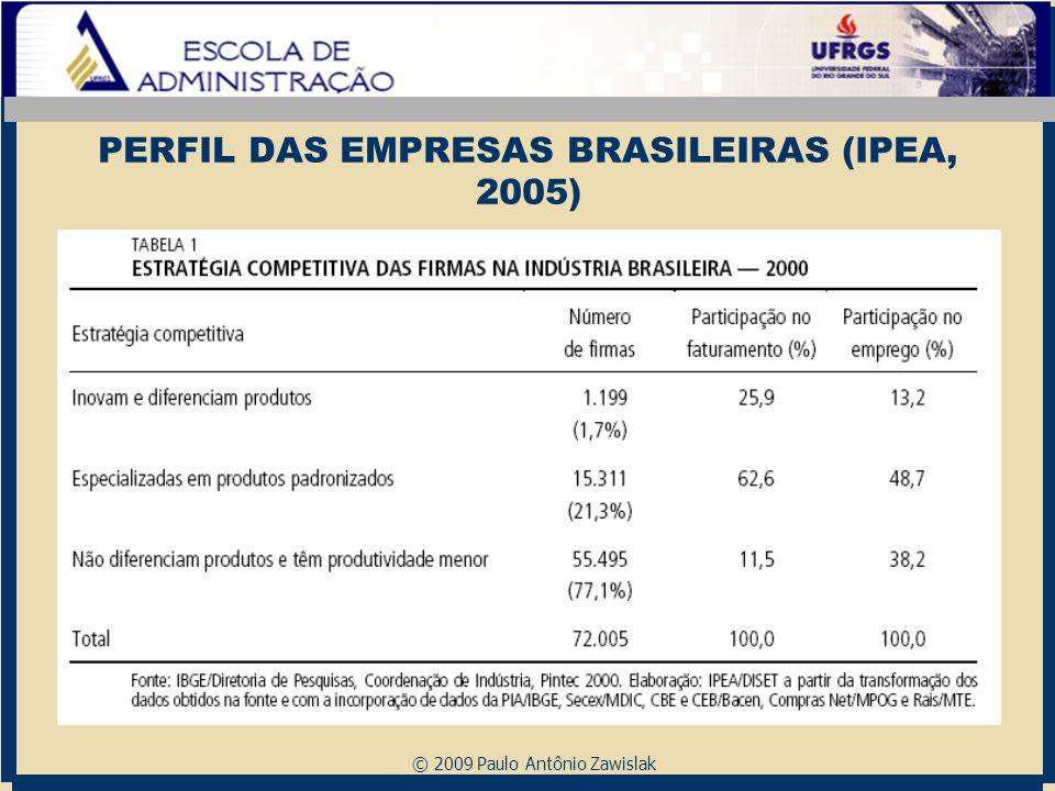 © 2009 Paulo Antônio Zawislak PERFIL DAS EMPRESAS BRASILEIRAS (IPEA, 2005)