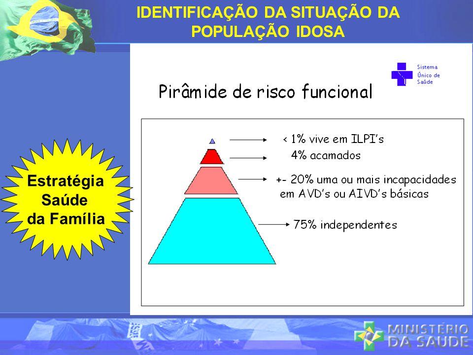 Estratégia Saúde da Família IDENTIFICAÇÃO DA SITUAÇÃO DA POPULAÇÃO IDOSA