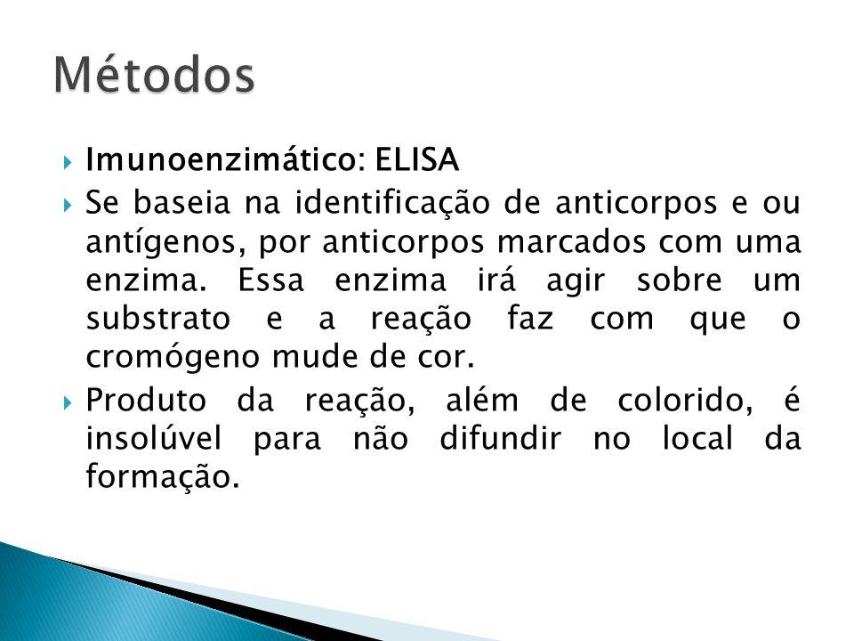  Imunoenzimático: ELISA  Se baseia na identificação de anticorpos e ou antígenos, por anticorpos marcados com uma enzima. Essa enzima irá agir sobre