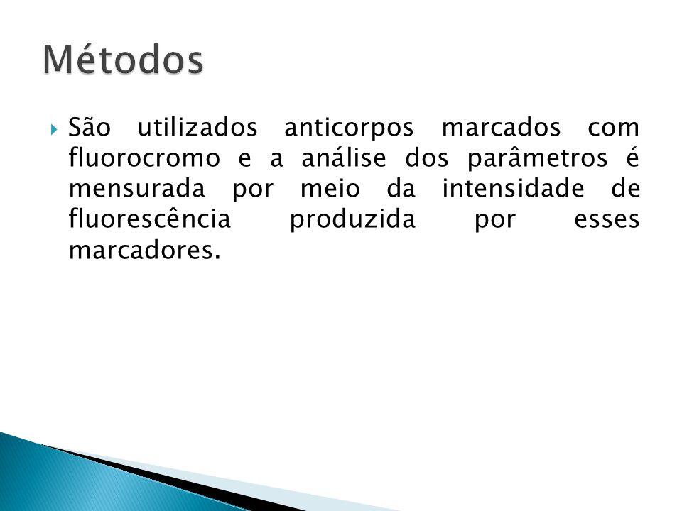  São utilizados anticorpos marcados com fluorocromo e a análise dos parâmetros é mensurada por meio da intensidade de fluorescência produzida por ess