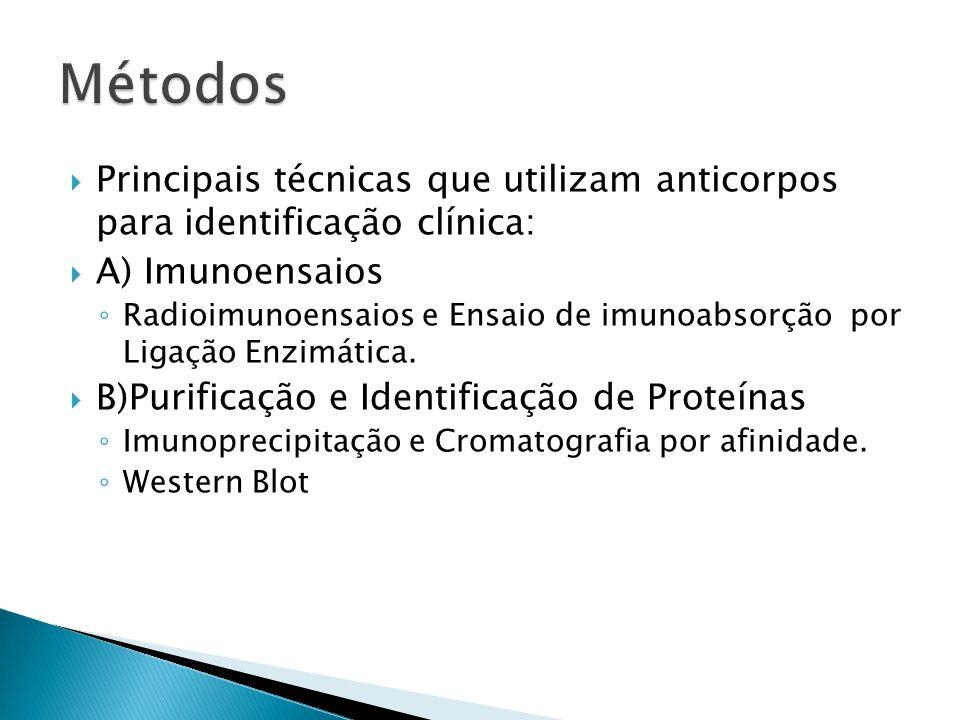  Principais técnicas que utilizam anticorpos para identificação clínica:  A) Imunoensaios ◦ Radioimunoensaios e Ensaio de imunoabsorção por Ligação