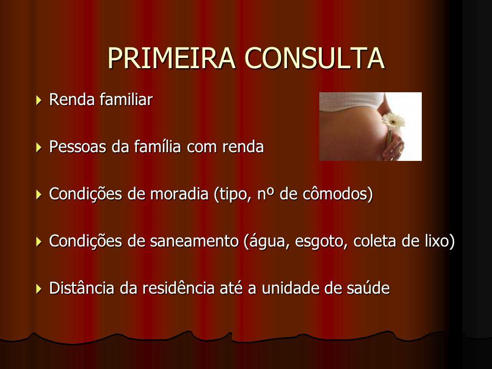 PRIMEIRA CONSULTA  Renda familiar  Pessoas da família com renda  Condições de moradia (tipo, nº de cômodos)  Condições de saneamento (água, esgoto