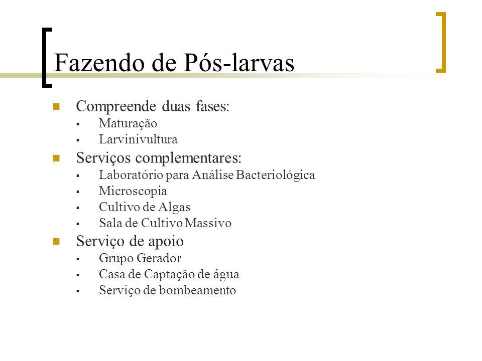 Fluxograma Laboratório de Pós-larva Fazenda de Produção Beneficiamento 1ª Etapa 2ª Etapa3ª Etapa