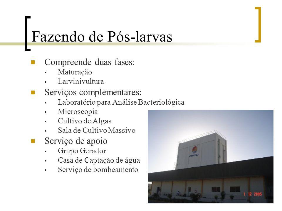 Laboratório de Pós-larvas Compreende duas fases:  Maturação  Larvinivultura Serviços complementares:  Laboratório para Análise Bacteriológica  Mic