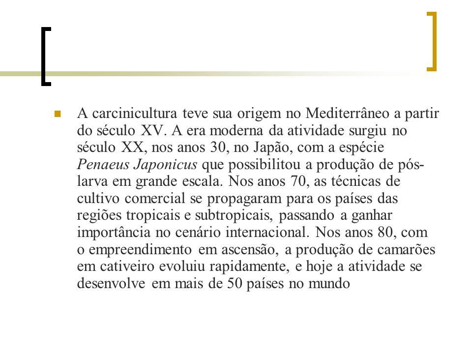 Histórico As práticas predatórias, em decorrência da sua elevada produtividade por hectare, utilizando para isso o ecossistema de manguezal, trazem co