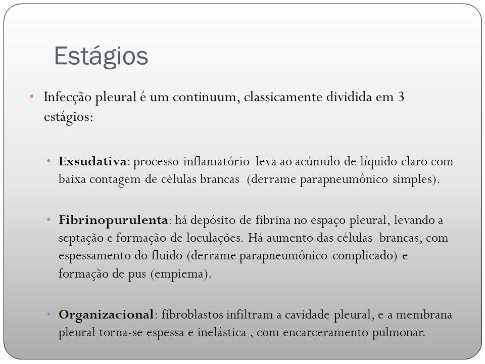 Estágios Infecção pleural é um continuum, classicamente dividida em 3 estágios: Exsudativa: processo inflamatório leva ao acúmulo de líquido claro com baixa contagem de células brancas (derrame parapneumônico simples).