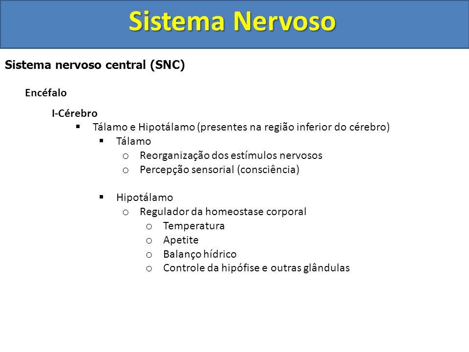 Sistema Nervoso Sistema nervoso central (SNC) Encéfalo I- Cérebro  Funções: o Sensações o Atos conscientes e voluntários (movimentos) o Pensamento o