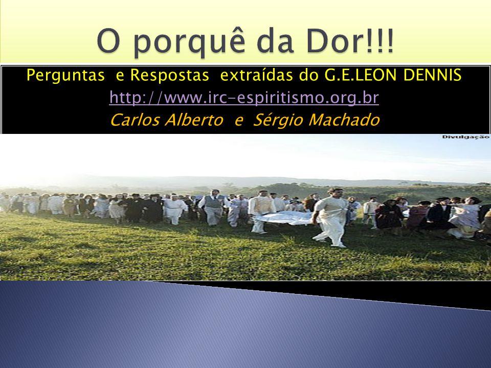 Perguntas e Respostas extraídas do G.E.LEON DENNIS http://www.irc-espiritismo.org.br Carlos Alberto e Sérgio Machado Perguntas e Respostas extraídas d