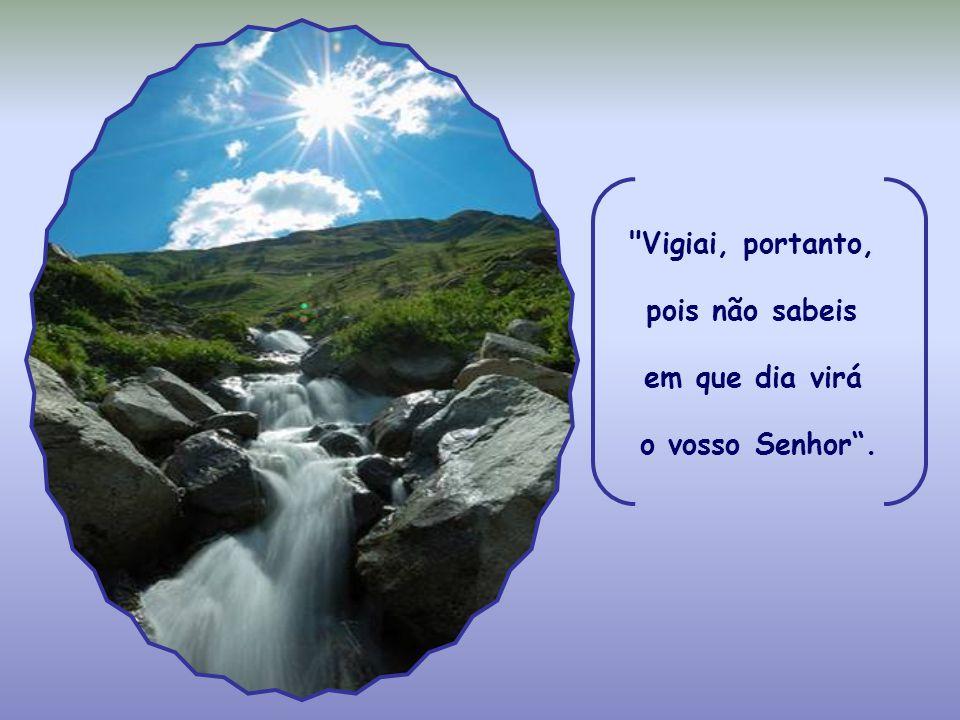 Vigiai, portanto, pois não sabeis em que dia virá o vosso Senhor .