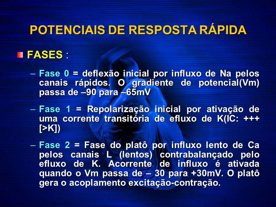 POTENCIAIS DE RESPOSTA RÁPIDA FASES : –Fase 0 = deflexão inicial por influxo de Na pelos canais rápidos. O gradiente de potencial(Vm) passa de –90 par