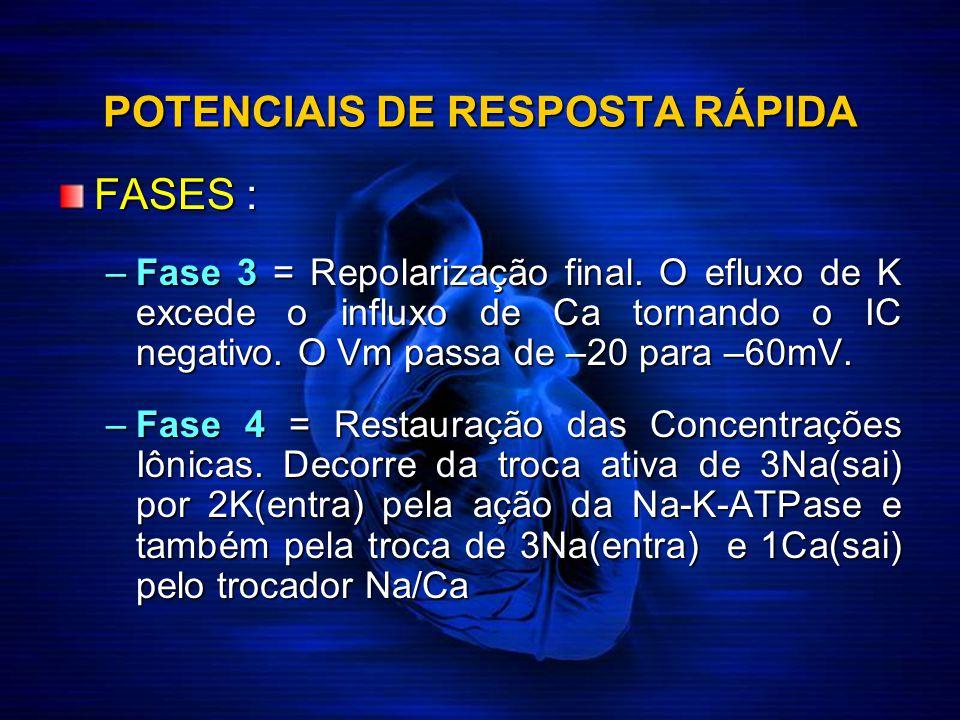 POTENCIAIS DE RESPOSTA RÁPIDA FASES : –Fase 3 = Repolarização final. O efluxo de K excede o influxo de Ca tornando o IC negativo. O Vm passa de –20 pa
