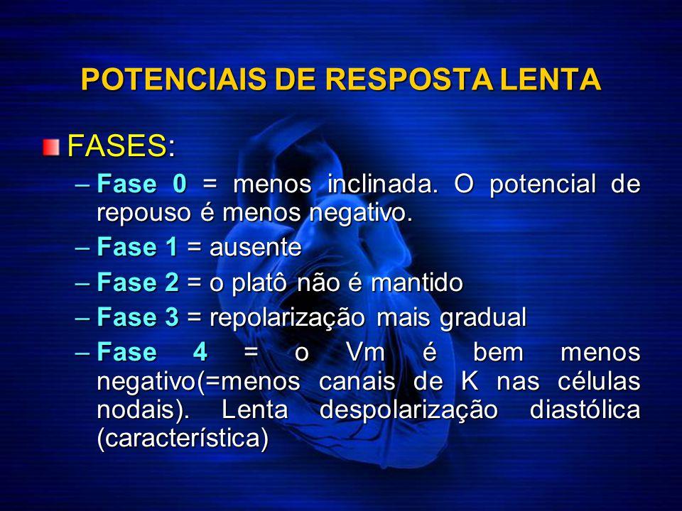 POTENCIAIS DE RESPOSTA LENTA FASES: –Fase 0 = menos inclinada. O potencial de repouso é menos negativo. –Fase 1 = ausente –Fase 2 = o platô não é mant