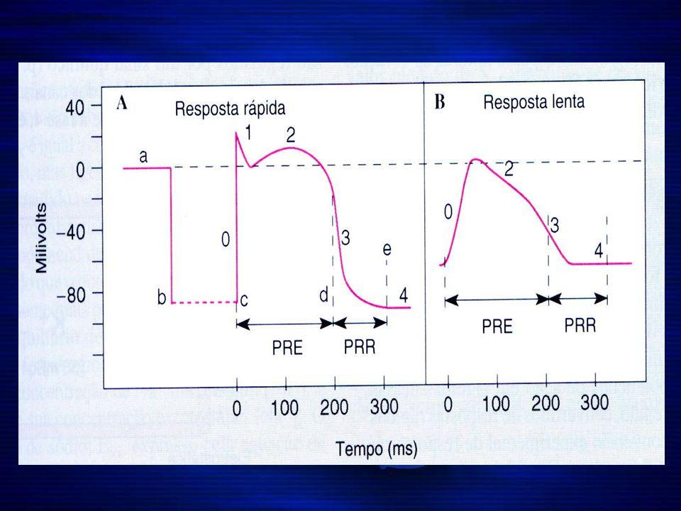 ACOPLAMENTO EXCITAÇÃO - CONTRAÇÃO Mecanismo pelo qual o potencial de ação causa contração das fibras musculares através da liberação de Ca do retículo sarcoplasmático e dos túbulos T para o sarcoplasma promovendo o deslizamento dos filamentos de actina e miosina resultando na contração miocárdica