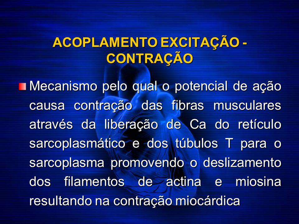 ACOPLAMENTO EXCITAÇÃO - CONTRAÇÃO Mecanismo pelo qual o potencial de ação causa contração das fibras musculares através da liberação de Ca do retículo