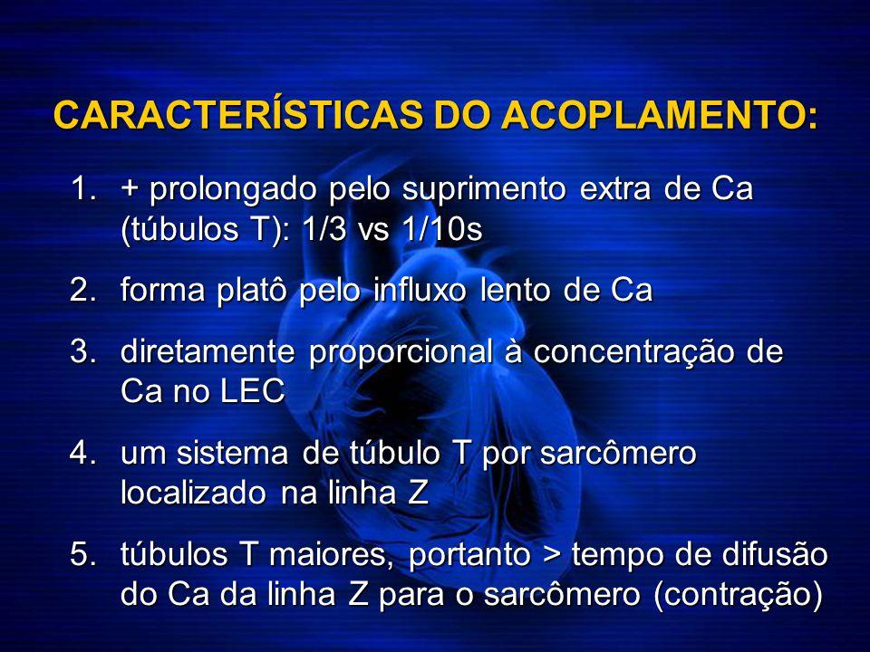 CARACTERÍSTICAS DO ACOPLAMENTO: 1.+ prolongado pelo suprimento extra de Ca (túbulos T): 1/3 vs 1/10s 2.forma platô pelo influxo lento de Ca 3.diretame