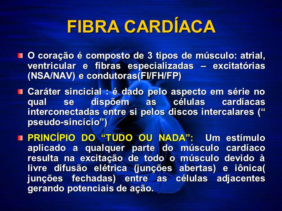 FIBRA CARDÍACA O coração é composto de 3 tipos de músculo: atrial, ventricular e fibras especializadas – excitatórias (NSA/NAV) e condutoras(FI/FH/FP)