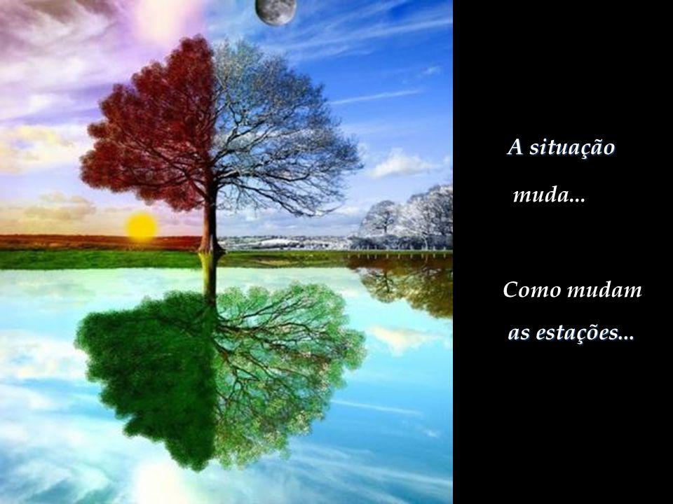 Tudo nessa vida tem um propósito... A dor que aflige, mas também passa. O silêncio que entristece, leva à meditação que felicita.