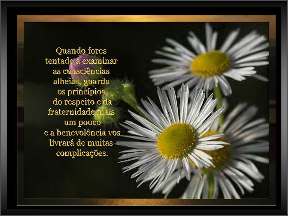 lilalilaz@uol.com.br Sair Música: Marble Halls -ENYA- Música: Marble Halls -ENYA-