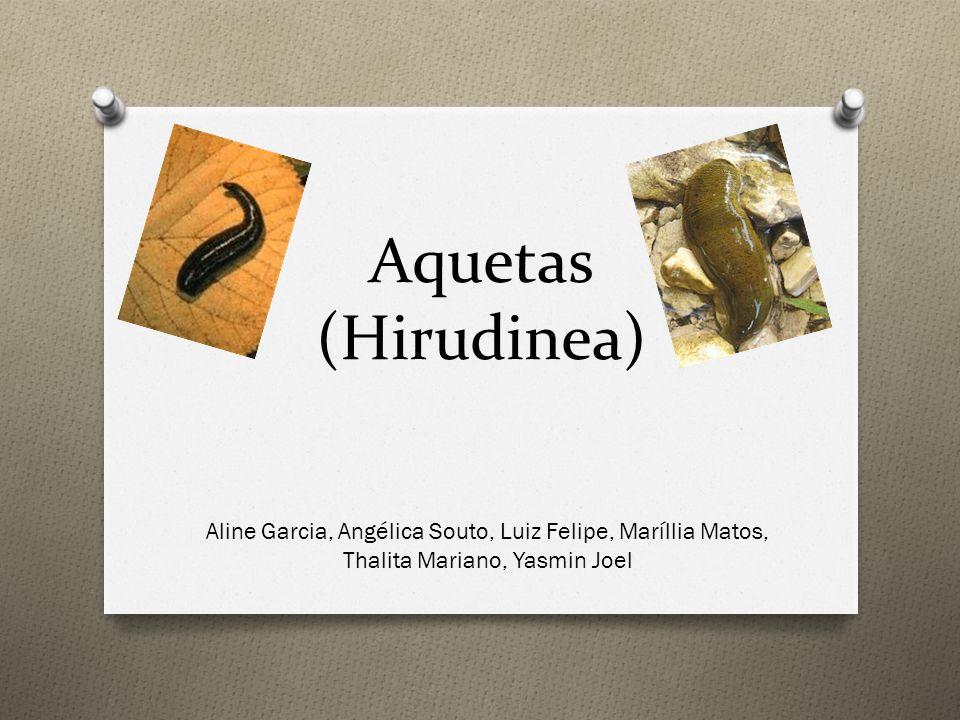 Aquetas (Hirudinea) Aline Garcia, Angélica Souto, Luiz Felipe, Maríllia Matos, Thalita Mariano, Yasmin Joel
