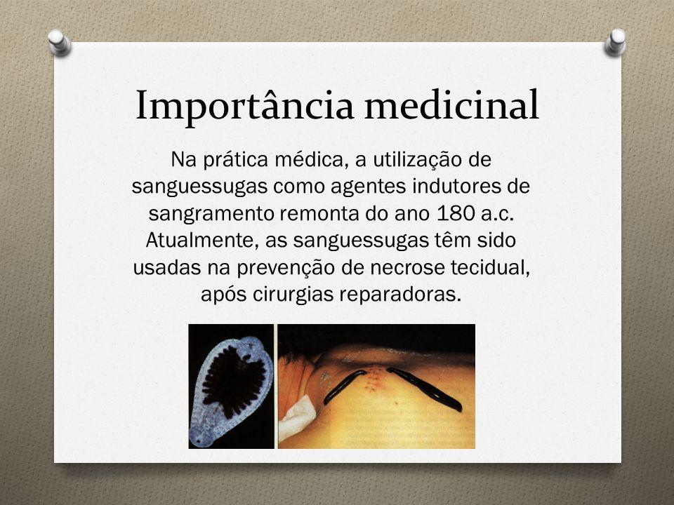 Importância medicinal Na prática médica, a utilização de sanguessugas como agentes indutores de sangramento remonta do ano 180 a.c. Atualmente, as san