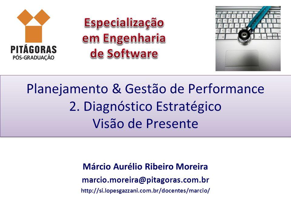 Planejamento & Gestão de Performance 2. Diagnóstico Estratégico Visão de Presente Márcio Aurélio Ribeiro Moreira marcio.moreira@pitagoras.com.br http: