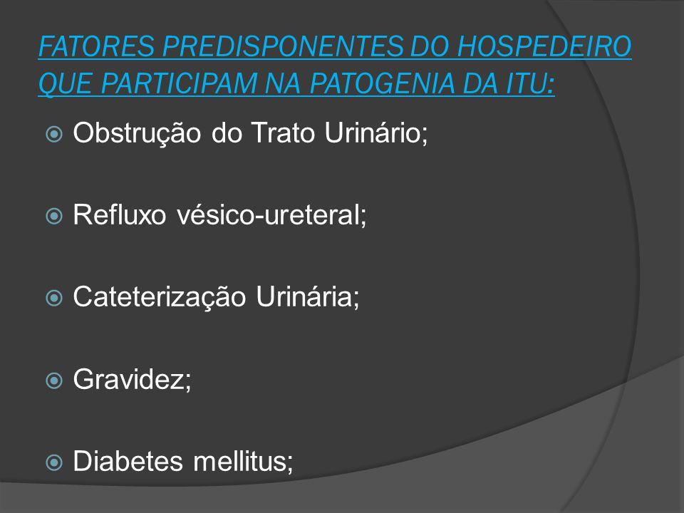 FATORES PREDISPONENTES DO HOSPEDEIRO QUE PARTICIPAM NA PATOGENIA DA ITU:  Obstrução do Trato Urinário;  Refluxo vésico-ureteral;  Cateterização Uri