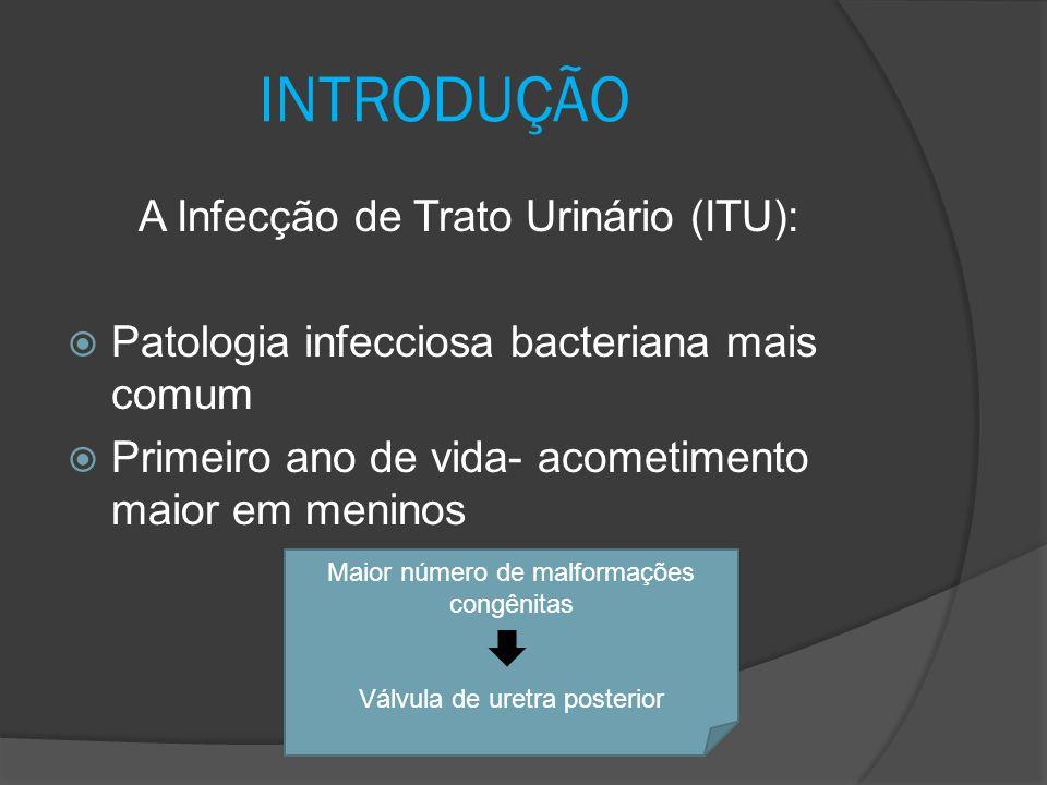 INTRODUÇÃO A Infecção de Trato Urinário (ITU):  Patologia infecciosa bacteriana mais comum  Primeiro ano de vida- acometimento maior em meninos Maio