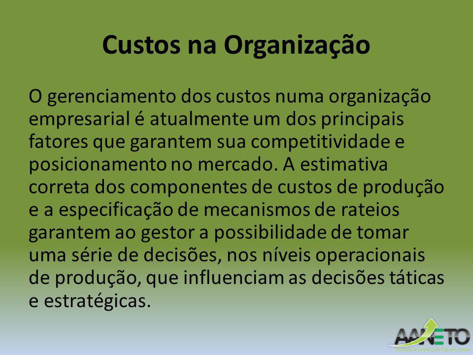 Custos na Organização O gerenciamento dos custos numa organização empresarial é atualmente um dos principais fatores que garantem sua competitividade e posicionamento no mercado.