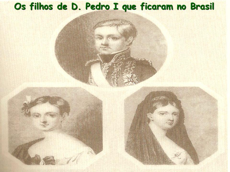 Os filhos de D. Pedro I que ficaram no Brasil