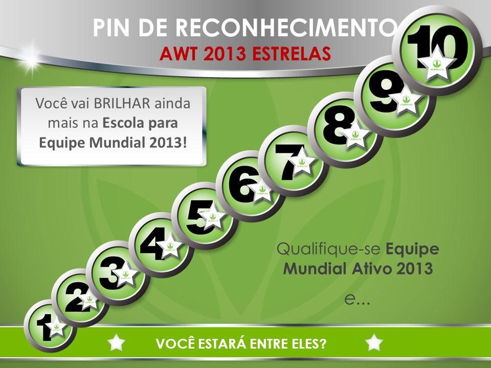 PIN DE RECONHECIMENTO AWT 2013 ESTRELAS Você vai BRILHAR ainda mais na Escola para Equipe Mundial 2013.