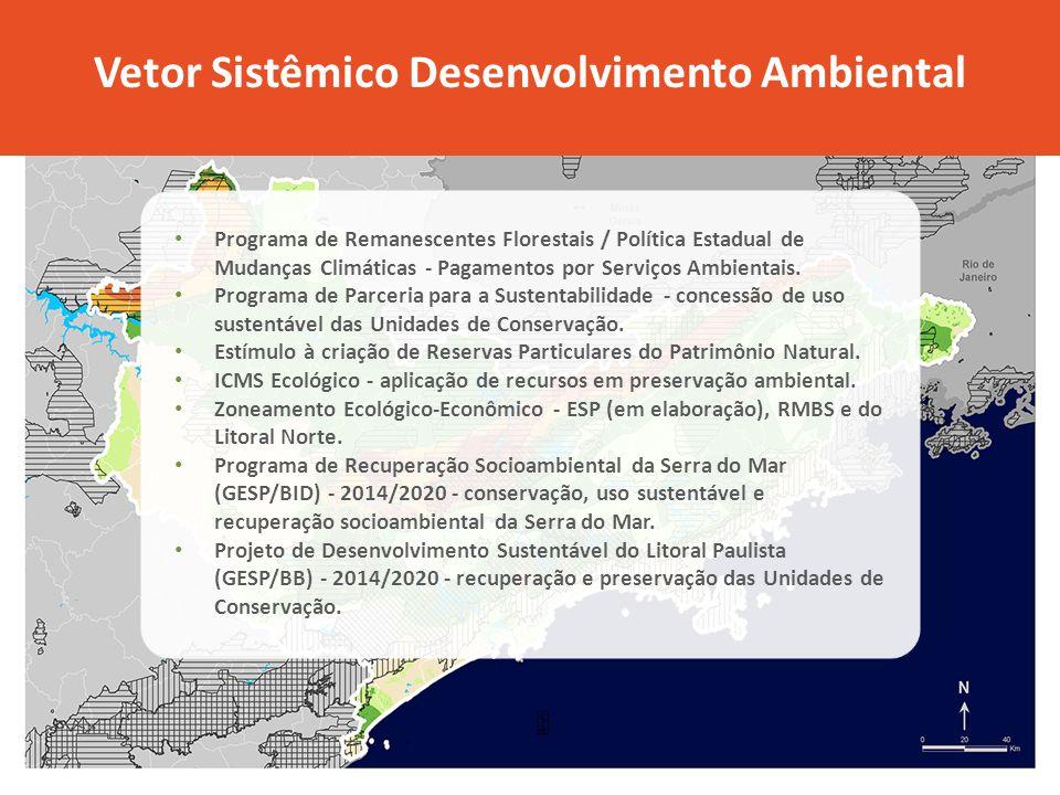 Vetor Sistêmico Desenvolvimento Ambiental Programa de Remanescentes Florestais / Política Estadual de Mudanças Climáticas - Pagamentos por Serviços Ambientais.