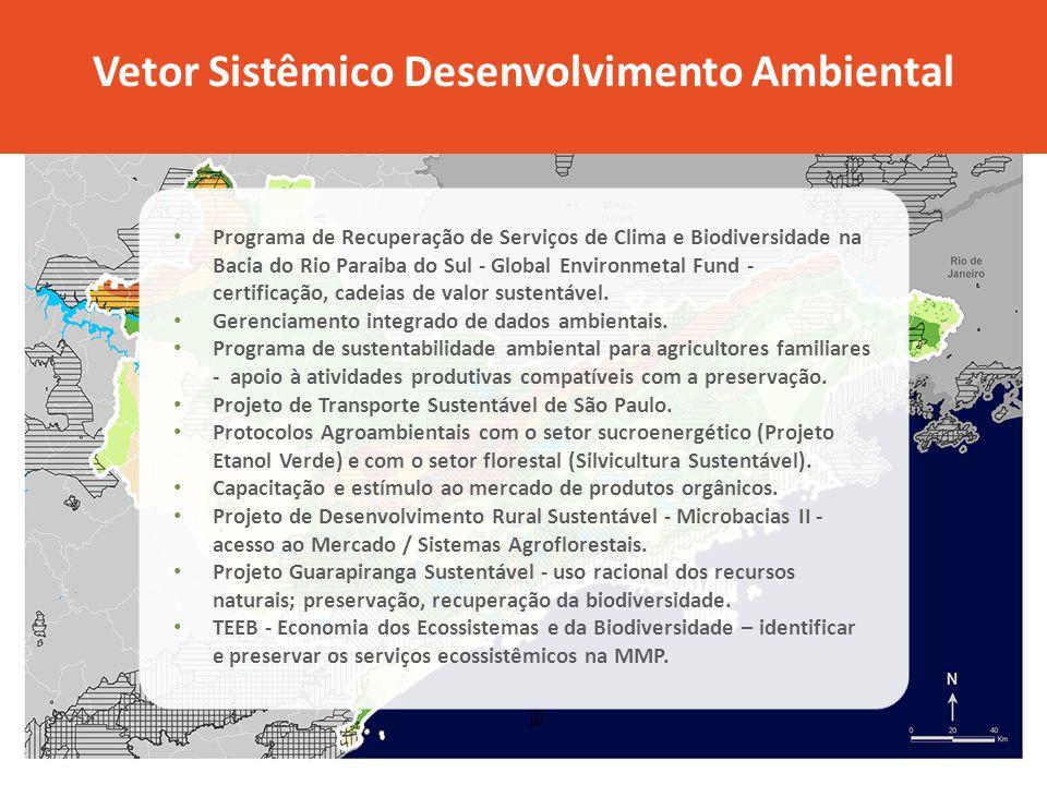 Vetor Sistêmico Desenvolvimento Ambiental Programa de Recuperação de Serviços de Clima e Biodiversidade na Bacia do Rio Paraiba do Sul - Global Enviro