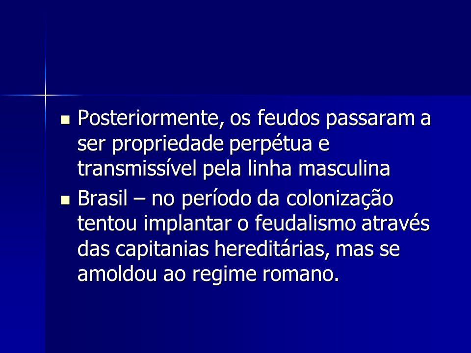 o procedimento do juízo divisório, que é formado tanto pela ação demarcatória, como pela divisória, esta última objeto da presente demanda, como bem ensina Humberto Theodoro Júnior, in Curso de Direito Processual Civil, Procedimentos Especiais, 19.