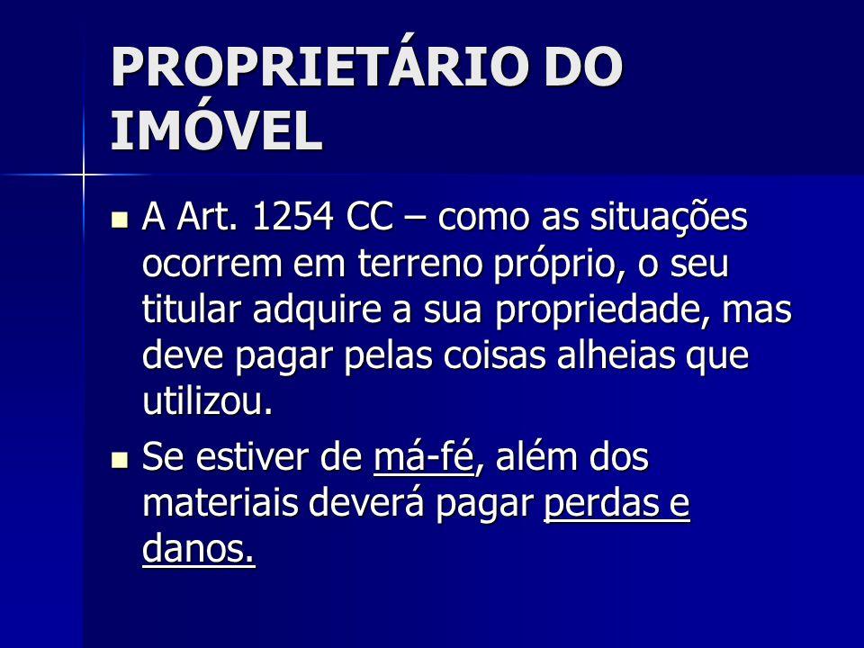 PROPRIETÁRIO DO IMÓVEL A Art. 1254 CC – como as situações ocorrem em terreno próprio, o seu titular adquire a sua propriedade, mas deve pagar pelas co