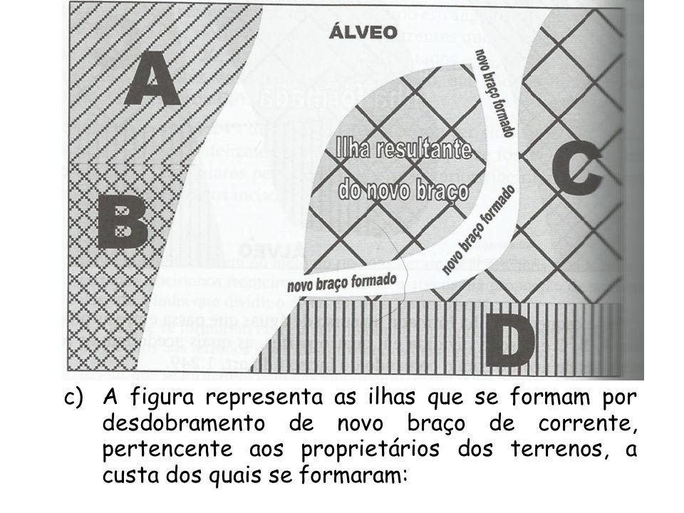 c)A figura representa as ilhas que se formam por desdobramento de novo braço de corrente, pertencente aos proprietários dos terrenos, a custa dos quai