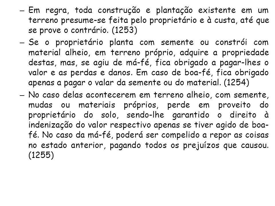 – Em regra, toda construção e plantação existente em um terreno presume-se feita pelo proprietário e à custa, até que se prove o contrário. (1253) – S