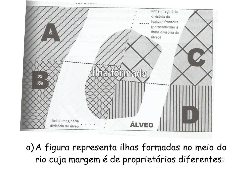 a)A figura representa ilhas formadas no meio do rio cuja margem é de proprietários diferentes: