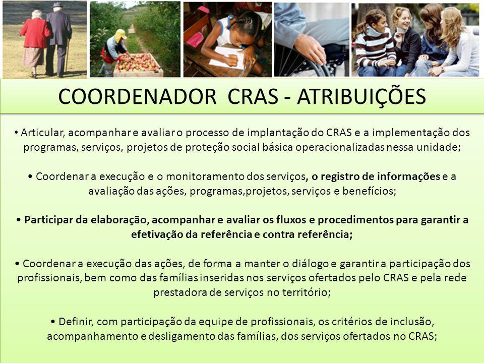 Articular, acompanhar e avaliar o processo de implantação do CRAS e a implementação dos programas, serviços, projetos de proteção social básica operac